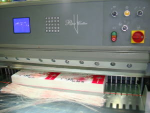 Sheet Paper Guillotine, Paper Sheeting Machine (QZYK-DH Series) pictures & photos