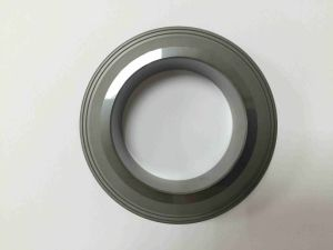 High Quality Pressureless Silicone Carbide Rings pictures & photos