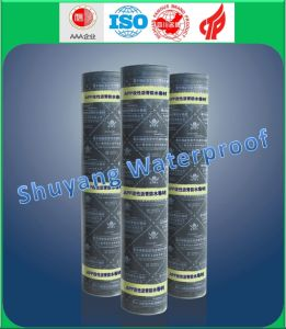 3mm APP Waterproof Membrane pictures & photos