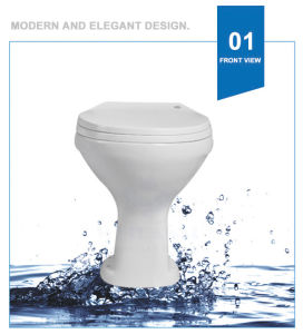 Weidansi Africa Ceramic Wash Down P-Trap Two Pieces Toilet (WDS-T6209) pictures & photos