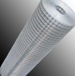 High Quality Welded Wire Mesh From Top Manufacturer