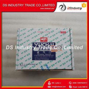 Yc6108zqb Yuchai A3000-1007011 Intake Valve pictures & photos