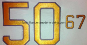 3D Foil Heat Transfer Label pictures & photos