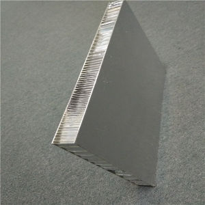 25mm Thick Aluminium Honeycomb Core Panels pictures & photos
