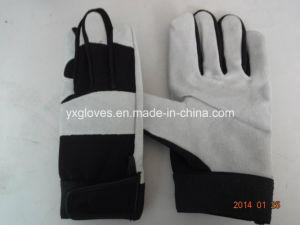 Cow Leather Glove-Work Glove-Safety Glove-Industrial Glove-Labor Glove pictures & photos