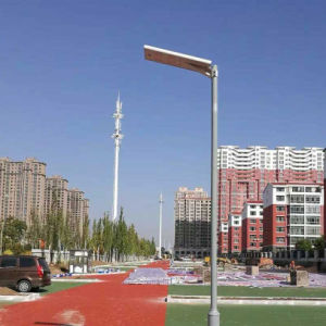 Bluesmart LED Street Lamp 20W Solar Road Light for Africa pictures & photos