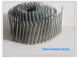 Stainless Steel Coil Nail pictures & photos