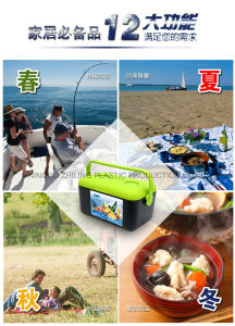 Cooler Box for Outdoor Use pictures & photos