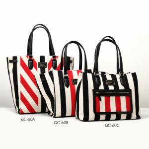 Designer Canvas Striped Series Fashion Lady Handbag (QC-60) pictures & photos