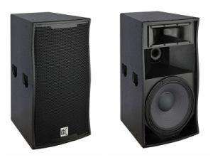 Cvr PRO Audio 15 Inch Woofer Three-Way, Bi-AMP Speaker Cabinet pictures & photos