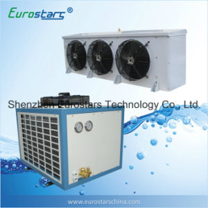 Condenser and Air Evaporator for Cold Room Cold Storage (ESBA-15NJTBY) pictures & photos