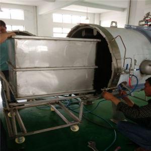 Professional Food Autoclave Sterilizer Machine pictures & photos