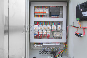3 Tons/Day with PLC Program Control System pictures & photos