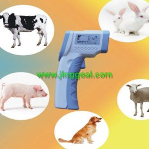Animal Infrared Thermometer pictures & photos