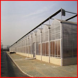 Agriculture Multi-Span Commerical Glass Greenhouse for Garden pictures & photos