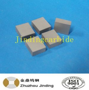 Tungsten Carbide Square Edge Snow Plow Carbide Tip pictures & photos