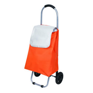 Factory Price Folding Bag Trolley Luggage (SP-511) pictures & photos