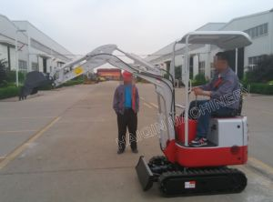 Haiqin Brand Mini Excavator (HQ08) with Ce, ISO Certificate pictures & photos