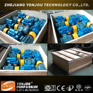 Three-Spindle Screw Pump pictures & photos