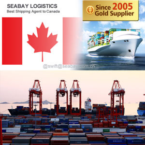 Top 3 Freight Forwarder From Shenzhen to Toronto pictures & photos