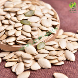 Inner Mongolia Shine Skin Pumpkin Seed for Export pictures & photos