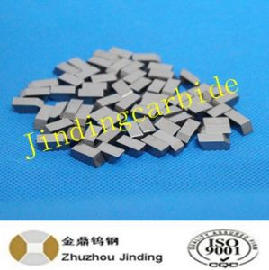 Tungsten Carbide Saw Tips for Wood Cutting Use in K20 pictures & photos