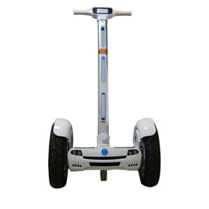 Adult Electric Mobility Scooter, Self Balancing Scooter pictures & photos