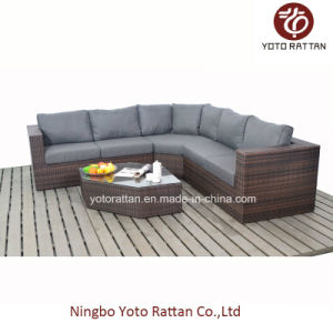 Brown Wicker New Sofa Set for Outdoor (1203) pictures & photos