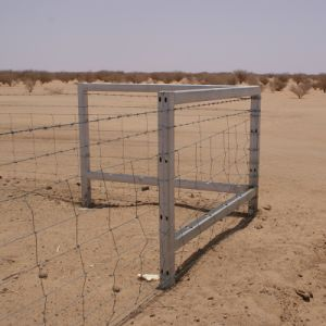 Galvaznied Wrapped Wire Cattle Farm Filed Fence pictures & photos