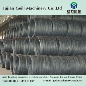 High Quality Steel Strip/Steel Sheet pictures & photos