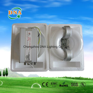 Energy Saving Induction Lamp pictures & photos