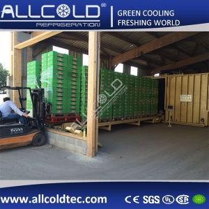 Fresh Produce Vacuum Cooler 1 Pallet-24pallets pictures & photos
