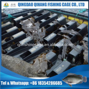 Long Service Life HDPE Floating Abalone Cage pictures & photos