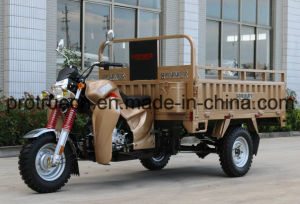 New Design Cargo Tricycle with Container Box pictures & photos