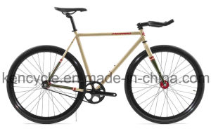 High Quality Single Speed Fashion Racing Bike/Fix Gear Bike Sy-Fx70017 pictures & photos