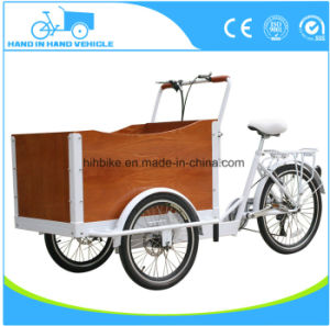 Closed Cabin Cargo Tricycle 3 Wheel Electric Bike Vehicle pictures & photos