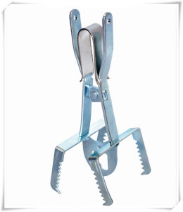 Scissors Type Metal Mole Trap (V14029) pictures & photos