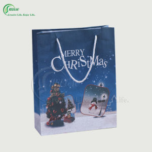 Custom Paper Shopping Gift Bag (KG-PB050) pictures & photos