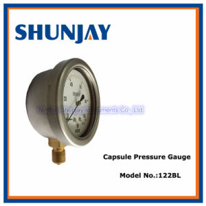stainless Steel, Brass Connector Capsule Gauge
