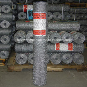 Sailin Hexagonal Galvanized Wire Mesh for Farm Fence pictures & photos