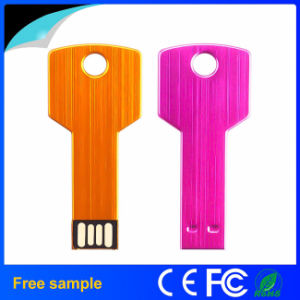 China Manufacter Wholesale Multicolor Steel Key USB Flash Drive pictures & photos