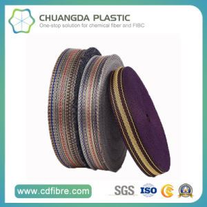 Hot Selling Polypropylene Webbing Used in Dog Collars and Leashes pictures & photos