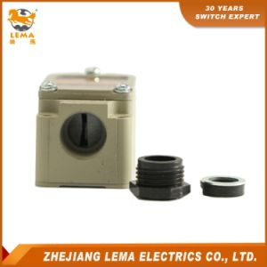 Lema Lwl-N12 Coil Spring-Steel Rod 10A 250VAC Limit Switch pictures & photos