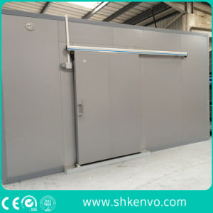 Stainless Steel Freezer Room Sliding Door pictures & photos
