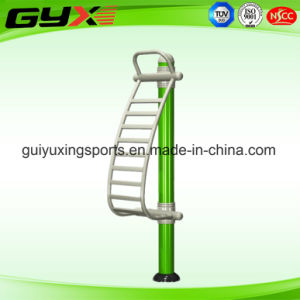 The Hot Outdoor Body Equipment for Adult/The Back Extension pictures & photos