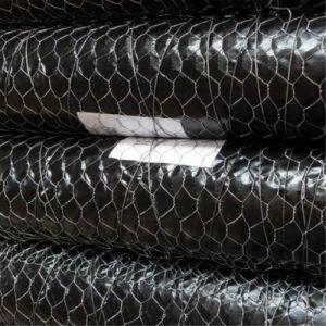 PVC Coated/Galvanized Hexagonal Wire Mesh pictures & photos