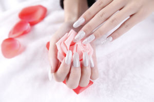 Beauty Silver Temporary Water Transfer Nail Sticker Art Nail Sticker pictures & photos