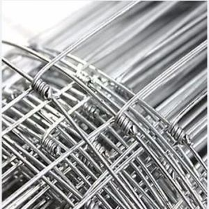 Filed Fence Wire Mesh pictures & photos
