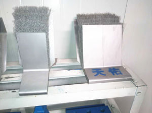 Steel Brush Seal for Tbm pictures & photos
