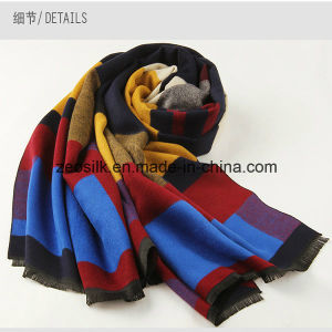 Fashion Women Acrylic Woven Scarf pictures & photos